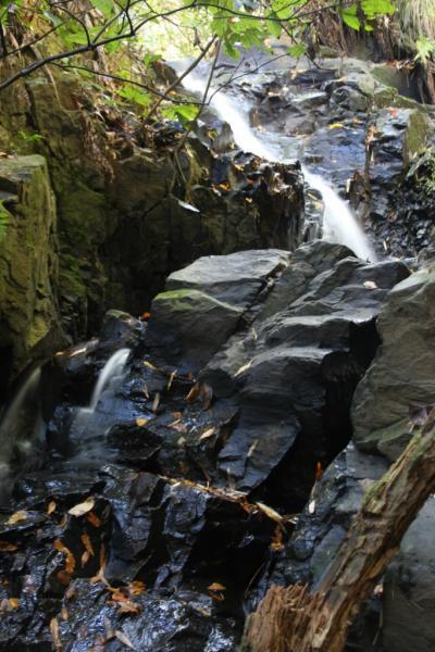 水すだれ探訪 #24~京都府(3)~良弁の滝(井出町)