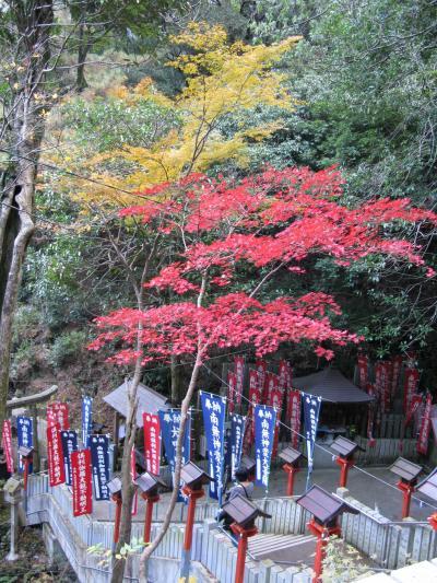 犬鳴山 七宝瀧寺に紅葉をもとめて・・・