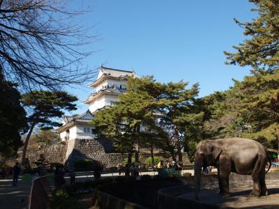 2008.11 箱根の坂? 小田原城で北条氏の栄光を垣間見る