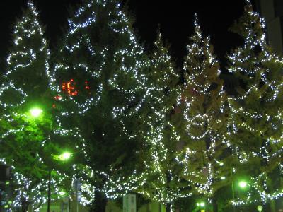 クリスマス・イルミネーションの三鷹ナイト