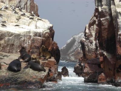 バジェスタス島