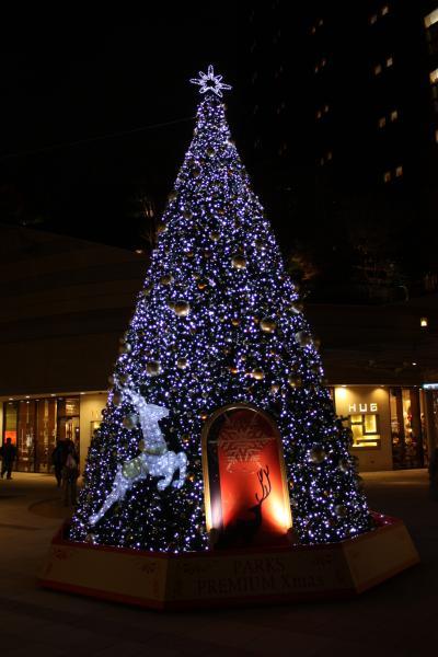 クリスマスツリーとLUSH(ラッシュ)で買い物 「なんばパークス」  工事中