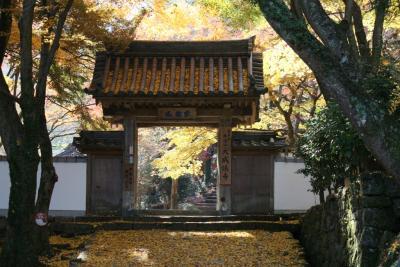 紅葉の牛滝山『大威徳寺』
