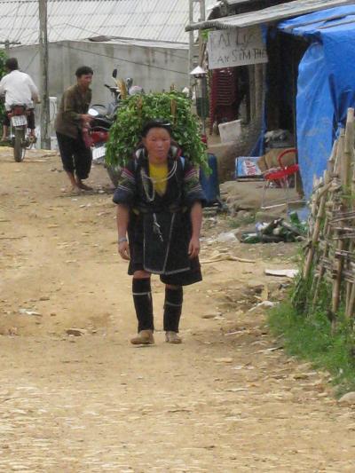 雲南南ルートの旅 (21) ベトナム・サパ郊外・?