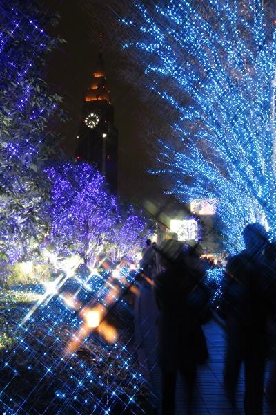新宿ぶらぶら(花園神社/太宗寺/新宿御苑/テラスシティイルミ)
