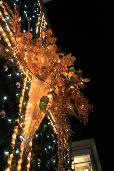 代官山アドレスプラザ・クリスマスイルミネーション 2008