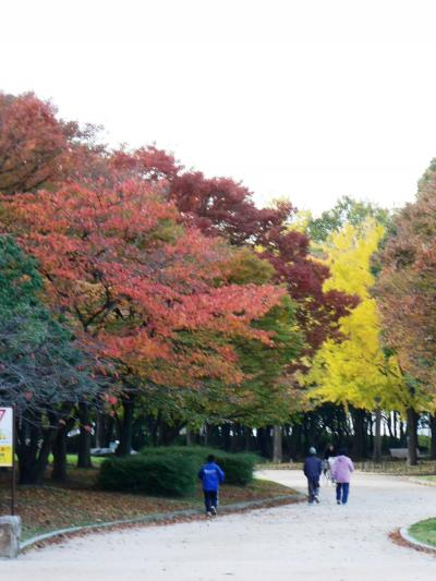 日本の旅 関西を歩く 堺市の大仙公園