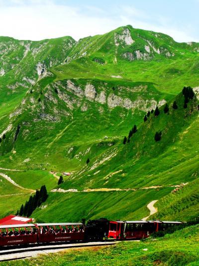 スイスGR83 ロートホルン観光SL乗車? ☆山腹の花園を通って