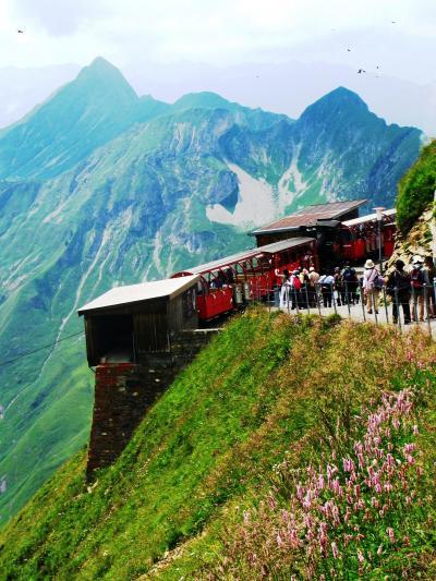 スイスGR86 再びSLでブリエンツに下山 ☆長閑な牧場や鉄道情景