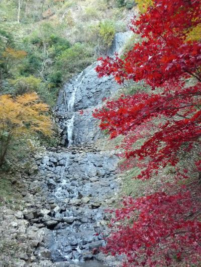 きままな伊豆ドライブ【その12】伊豆市の滝めぐり《旭滝》