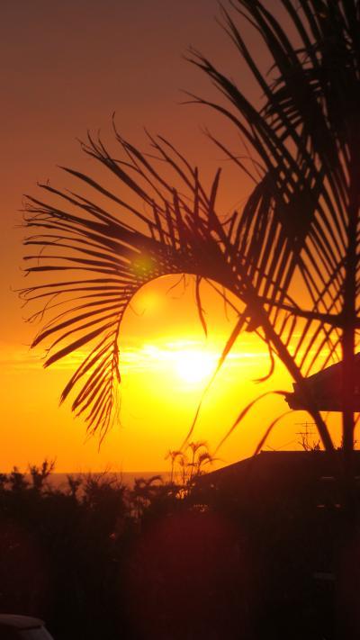 小浜島滞在・・・はいむるぶしの風景