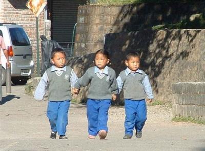 2008ダラムラ紀行(4)初級クラス