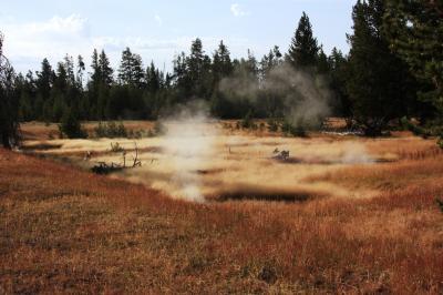 ワイオミング州の国立公園を歩く(13) 湯けむりもうもうの、ウエストサム・ガイザー・ベイスン West Thumb Geyser Basin ~2008年夏休み~