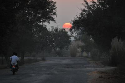 天上天下の国 インド 2 仏教大学ナーランダー