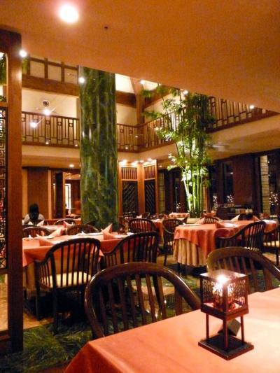 5.エクシブ蓼科 2008年大晦日の日没 中国料理 翆陽 でのアラカルトの夕食