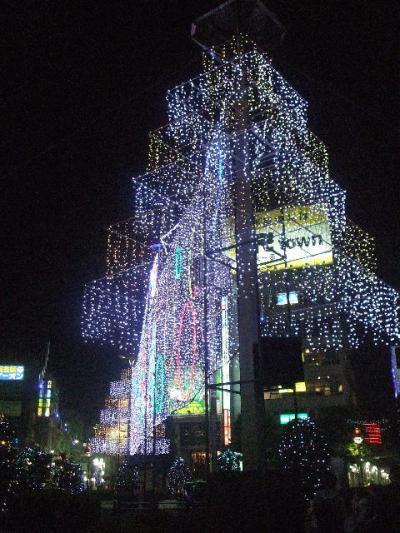 吉祥寺界隈(2008.11.1~11.15)