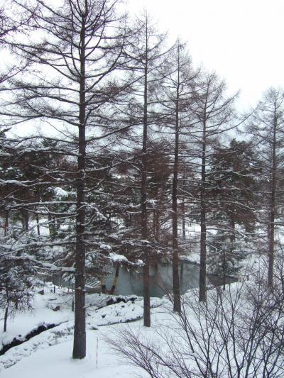 今シーズン初★スキー旅行★ リステル猪苗代? ~2日目編~