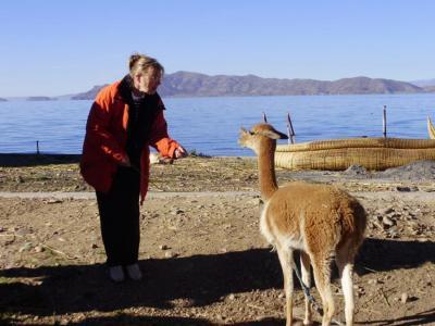 南米ボリビア国ラパスのチチカカ湖の入り口ワタハタの博物館とウロス島