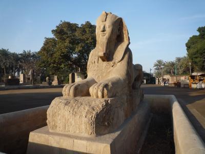 2009年1月 カイロ・ルクソール個人旅行