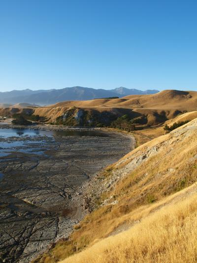NZ東海岸エコツーリズムの旅15/19 ~大自然の残るカイコウラにて・・