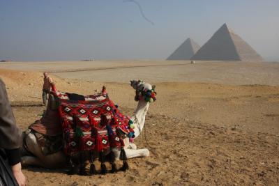 アブ・シンベルに泊まる エジプトハイライト8日間 2−1