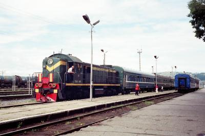 植林&シベリア鉄道の旅