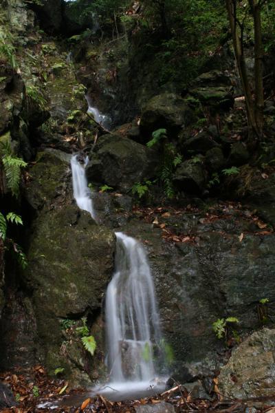 水すだれ探訪 #43~大阪府(6)~椎尾の滝(島本町)