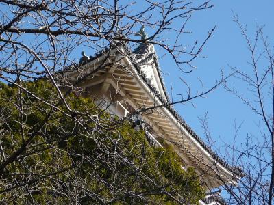 2009年1月 冬の小田原 お城と海岸