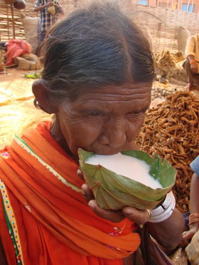 インドの人々と遺跡を訪ねて ジャグダルプアーの村へ No2