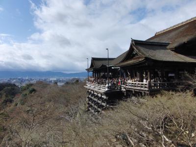 京都('09初詣)
