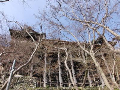 京都(八坂の塔・清水寺)