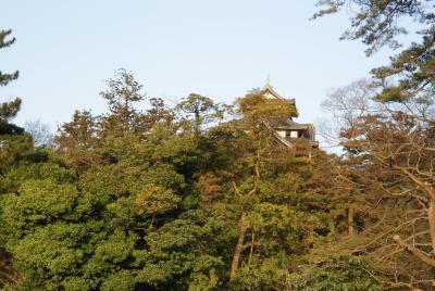 早咲きの桜を求めて(島根)ぶらり一人旅(2)