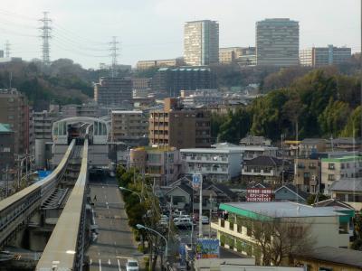 2009.3多摩,八王子大栗川散歩3-多摩横山の面影を求めて 古い神社と寺