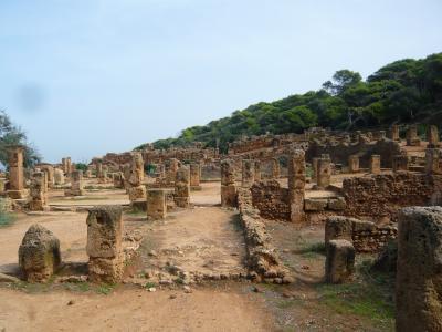 アルジェリア世界遺産の旅ーティパサ遺跡