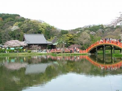 2009年4月5日 横浜・金沢文庫 称名寺の桜
