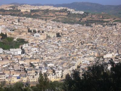 2009年初アフリカ・モロッコの旅・フェズ編