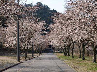 高賀神社の神水庵