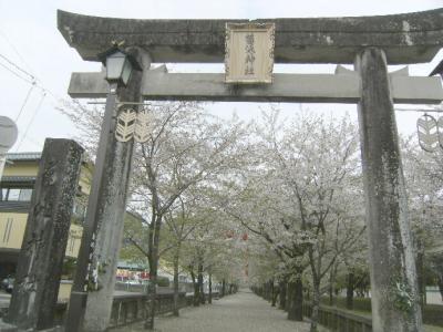 青春18*SUNQ州旅行? 菊池神社