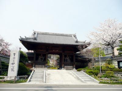 新寺通の寺の桜巡り その4 妙心院