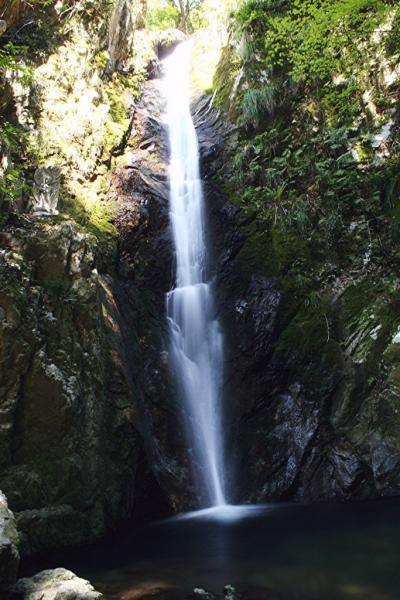 水すだれ探訪 #47~兵庫県(14)~独鈷の滝(丹波市氷上町)