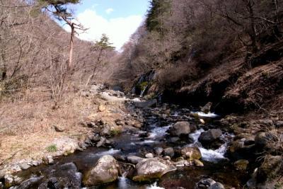早春の清里・東沢渓谷