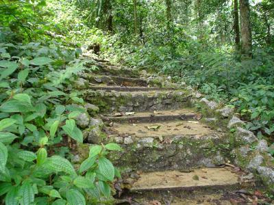 常春の楽園10: キャメロン・ハイランド 「パリット滝」 ジャングルウオークNo.4
