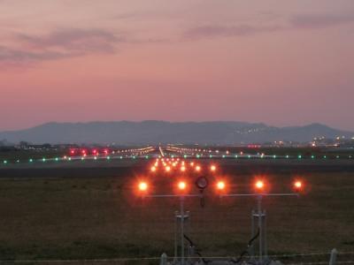 2009桜日記 吉野への桜旅? (千里川土手&伊丹空港 飛行機撮影編)