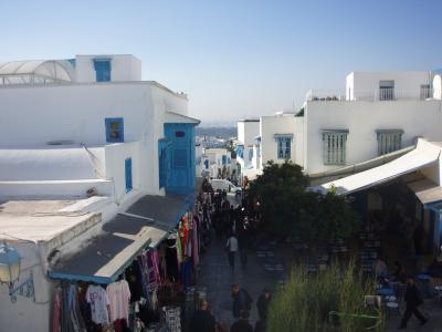 チュニジア旅行記 【1】チュニスおよびその周辺