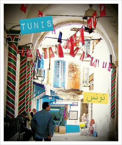 #17 チュニジア/チュニス 女バックパッカーひとり旅'08