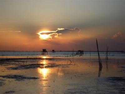 タイ チョンブリ の夕日