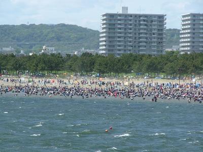 2009年4月26日 横浜海の公園潮干狩り渋滞と八景島のお花