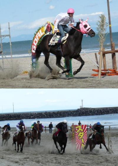 またまた見てきました、相良草競馬2009@相良サンビーチ(牧之原市)