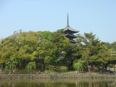 2009年4月 ~ 奈良公園 春日大社 興福寺 奈良町 2of2 ~