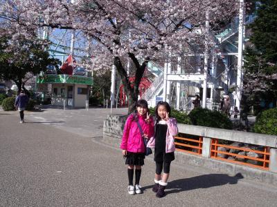 桜満開の東山公園